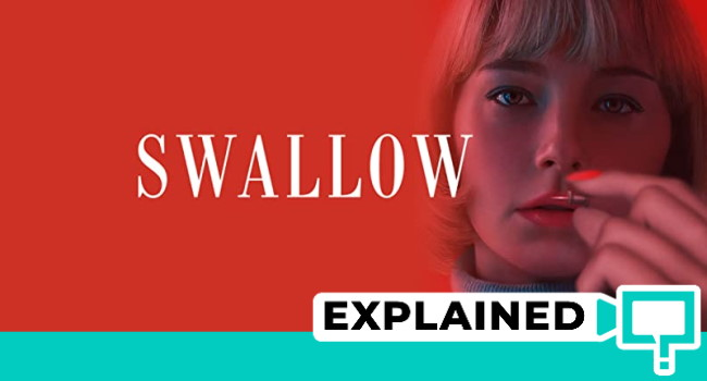 swallow movie explained