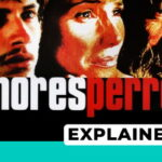 amores perros explained
