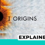 I Origins explained