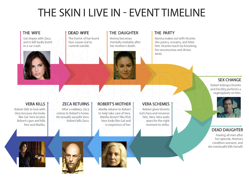 The skin i live in events timeline diagram